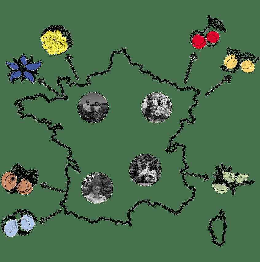 oden, huiles végétales